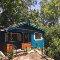 Blue Ivy: Modern Mountain Gem
