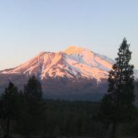 Tentrr - Mount Shasta Dreaming