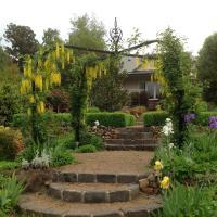 Delderfield Cottages