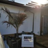 KAFUU guesthouse+cafe
