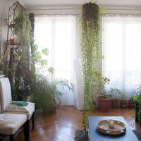 HostnFly apartments - Superb bright and vegetal apartment