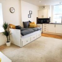 Entire modern flat in Cardiff