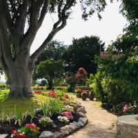 Octon Cottage