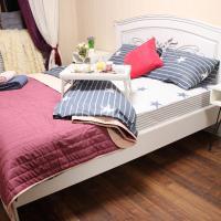 Уютная 2-ух комнатная квартира в самом центре города Киева