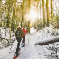 Chalet Grandvalira Rando-Ski