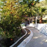 House with beautiful garden in Plomari