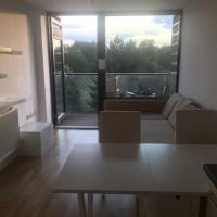 Bright And Modern 1 Bedroom Flat In Shepherds Bush