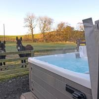 Glen Roe Lodge on Farm stay with Hot Tub
