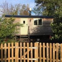 Shepherds hut New Forest