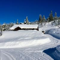 Exclusive holiday cabin 3 hrs from Oslo