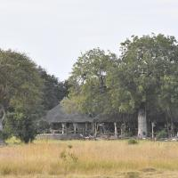 Mikumi Wildlife Camp
