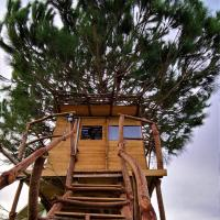 Ionian Treehouse Ecohosting