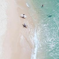 New Surf Paradise Midigama
