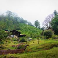 Boquete Tree Trek Eco Adventure Park, hotel in Boquete
