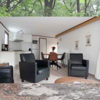 HuisjesPutten mooie moderne chalet Sprielderbos
