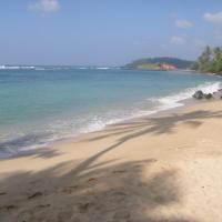 SunRay Rest - Beach View Homestay
