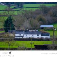 Cosy quirky cottage