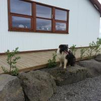 Skálinn between Gullfoss and Geysir - Myrkholt Farm、Haukadalurのホテル