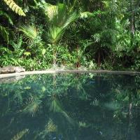Daintree Rainforest Retreat Motel