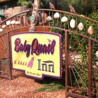 Baby Quail Inn