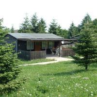 Ferienanlage Reiterhof Pilger