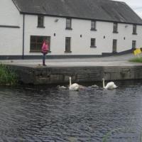 Ballycommon House