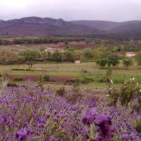 Casa rural Las Lucias