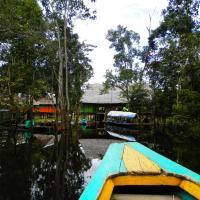 Amazon Eco Tours & Lodge, hotel in Santa Teresa