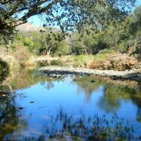Tsauchab River Camp