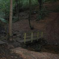 Dimmingsdale Woodside Lodge