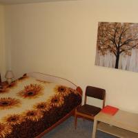Apartment on Krasny Pereulok 8