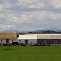 Ballymultimber Cottages
