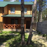 Cottage in Sosnovom Boru