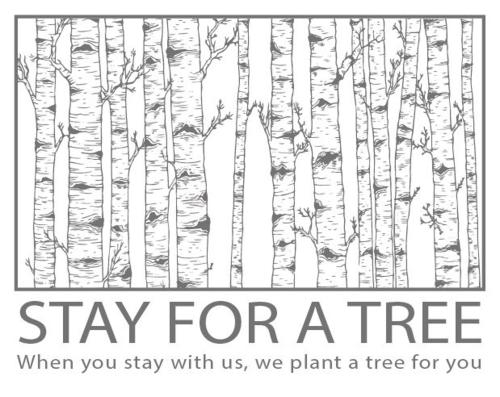 Stay for a tree - Studio Lodge